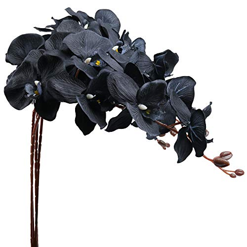U'Artlines 39 Inch Artificial Butterfly Orchids Branches 4PCS Greenery Plants for Home Decoration(4pcs Black)