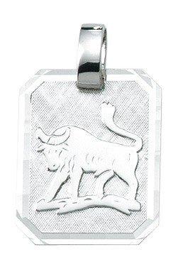 Sterrenbeeld * Stier * hanger van zilver