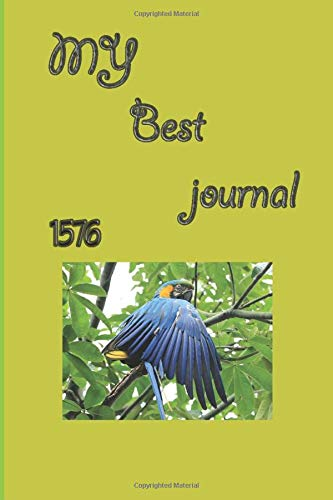 my Best journal 1576: Journal to Record Experience, Birds in Watercolor, Collage, and Ink A field guide to art techniques and observing in the wild ,dont waste your chance.