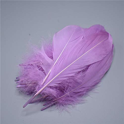 Worldoor Natural Goose Feathers Clothing Accessories Pack of 100 (Lavender)