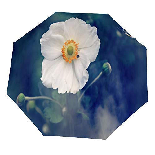 Cheyan opvouwbare paraplu winddicht regendicht draagbare lichtgewicht reizen compacte aangepaste anemoon bloem plant natuur zomer