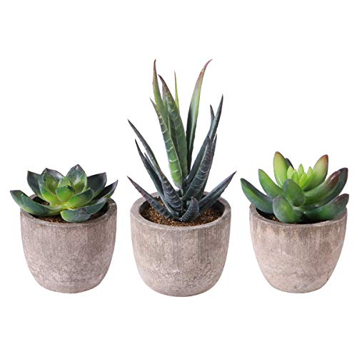 OUNONA 3 Stücke Künstliche Sukkulenten Pflanzen mit Töpfen Tischdeko Haus Balkon Büro Deko