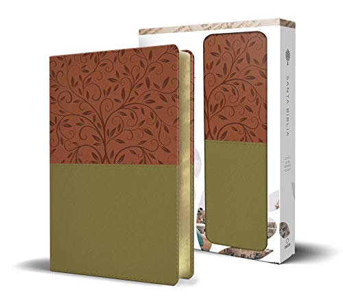 Biblia Reina Valera 1960 letra grande en caja de regalo. Símil piel,...