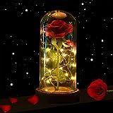shirylzee Die Schöne und das Biest Rose, Ewige Rose im