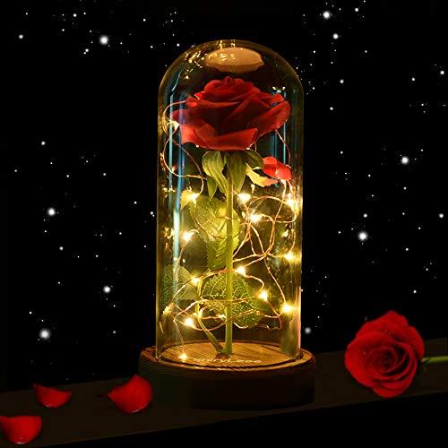 shirylzee Die Schöne und das Biest Rose, Ewige Rose im Glas Rose in Glaskuppel Künstlich Blumen Rosen mit LED-Licht, Haus Dekoration Geschenk zum Muttertag Weihnachten Jubiläum Geburtstag Hochzeit