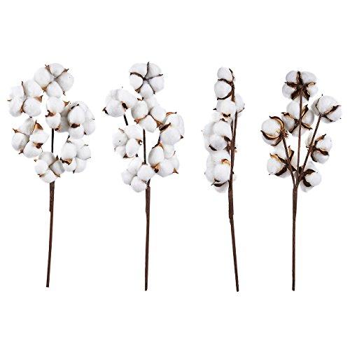 Juvale Tallos de algodón – Flores de algodón Artificiales, Estilo Granja, jarrón de exhibición, decoración rústica para el hogar, Oficina