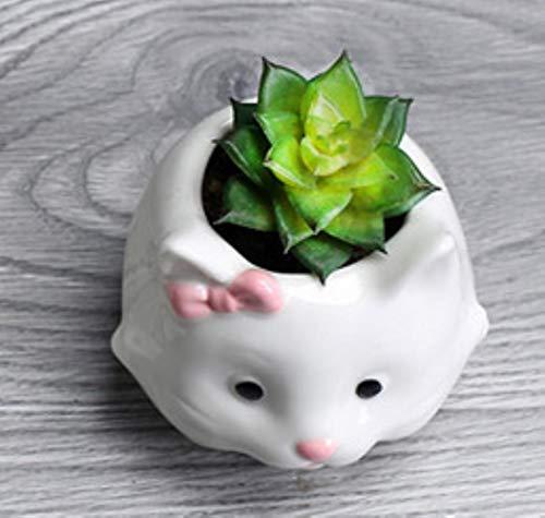 XCVB Ingemaakte kunstbloem Leuke Kat Schapen Vorm Planter Pot Home Decor Tuin Potten Plantenbakken Keramische Bloempot Succulenten, Kat