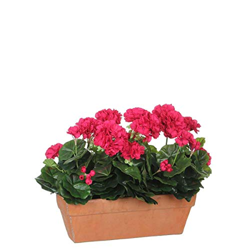 MICA Decorations Geranium, Rose, 40
