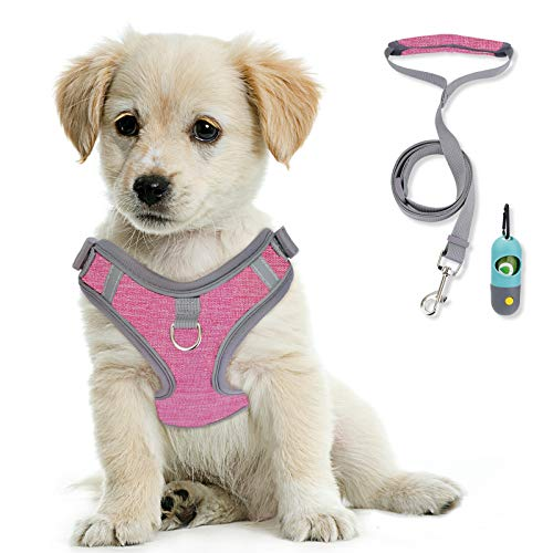 KITTYWOO Dog Harness Leash Set No Pull Dog Harness Puppy Padded Mesh Vest with Leash Set Easy Put On & Take Off Vest Harness for Small to Large Breed Pets