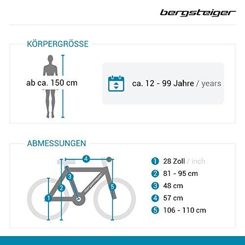 Bergsteiger Amsterdam 28 Zoll Damenfahrrad, ab 150 cm, Korb, Fahrrad-Licht, Damen-Citybike mit Rücktrittbremse, Hollandrad im Retro-Design - 2