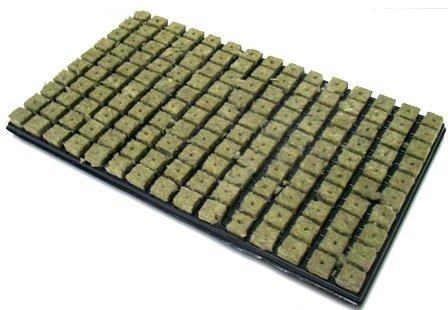 Grodan Steinwolle Anzuchtmatte 150er Tray 2,5 x 2,5 cm