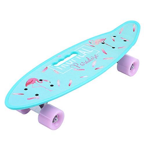 ENKEEO Fish Board Mini Cruiser Skateboard 57cm 4 PU Ruote per Principiante...