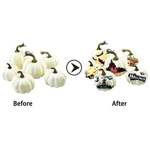 taianle Halloween Kürbis Dekoration - 6 Stück Verschiedene Größen Gefälschte Kürbisse Schaum Kürbisse Weiße Mini Künstliche Kürbisse für Halloween Thanksgiving Dekorieren