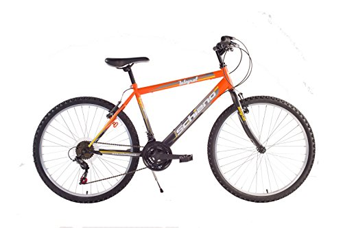 SCH F.LLI Schiano Integral Power 18V Bike, Orange/Schwarz, 24