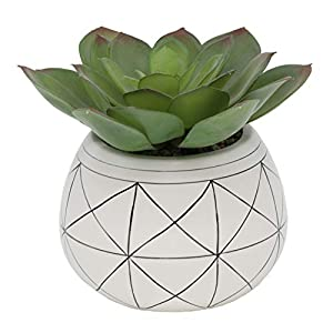 Flora Bunda Mid Century Artificial Plants Artificial Succulent in 6.5 Inch Round Geometric Hand Painted Planter with Legs,6.5″ Round White/Black Line