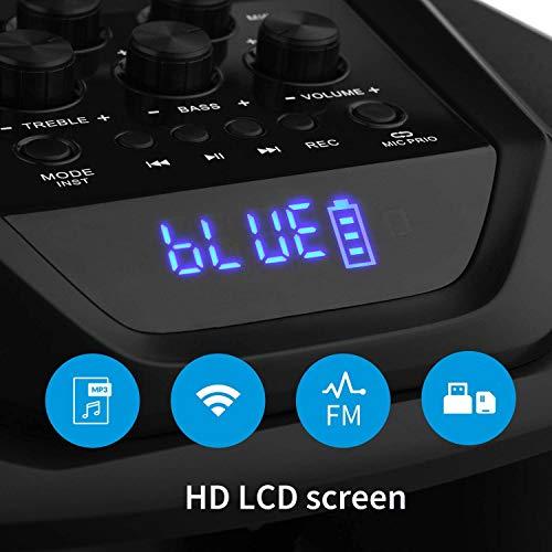 Sistema PA Audio Portabile Moukey Ricaricabile Bluetooth Altoparlante Amplificato 650 Watt peak power Impianto Karaoke Natale con ingressi USB SD MP3, 2 microfoni, telecomando, 12''-MTs12-1