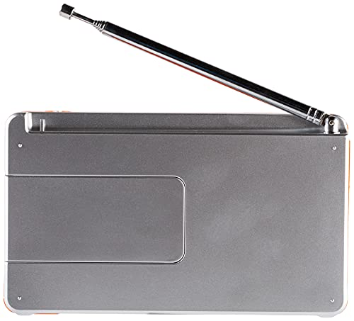 TechniSat DIGITRADIO 1 - tragbares DAB+ Radio mit Akku (DAB, UKW, FM, Lautsprecher, Kopfhörer-Anschluss, Favoritenspeicher, OLED-Display klein, 1 Watt RMS) silber/orange