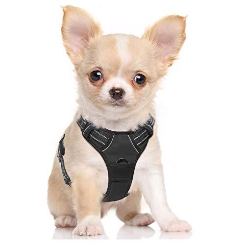 rabbitgoo No-Pull Hundegeschirr für kleine Hunde Welpengeschirr Einstellbar Weich Geschirr Sicher Kontrolle Brustgeschirr Gepolstert Schwarz S