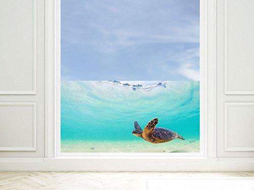 GRAZDesign Milchglasfolie Fenster Unterwasser, Fensterschutzfolie Schildkröte, Blickdichte Fensterfolie Blau, Fensterfolie Badezimmer / 80x57cm