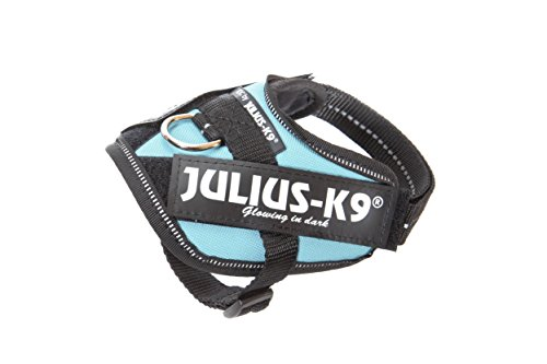 Julius-K9 16IDC-BS-B1 Powergeschirr, Größe Baby 1, Blue Sky