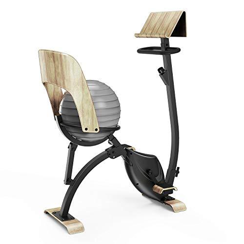 Klarfit Roomik Cycle - Vélo d'appartement, Volant d'inertie 8kg, 8 Niveaux de résistance magnétique, Support Tablette