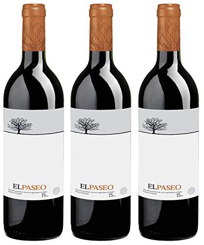 Bio Wein Rotwein Trocken Tempranillo Merlot Spanien Navarra 2017 Cuvée Vegan (3 x 0,75l)