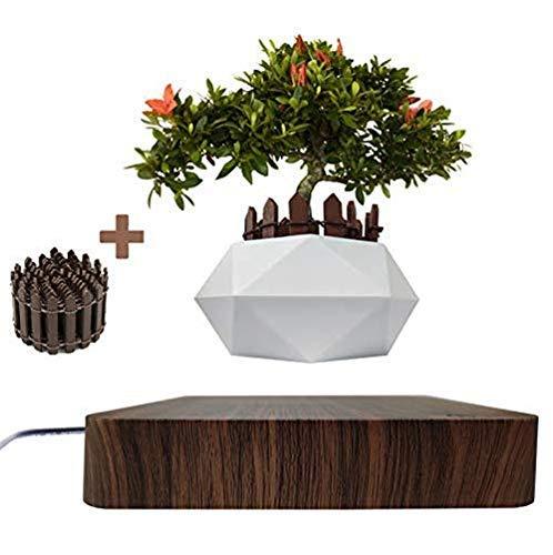 JU&MU Macetero Flotante para bonsái y bonsái, Soporte magnético Flotante para el hogar, Escritorio, decoración de macetas y macetas de casa y jardín (Madera Oscura)