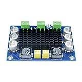 Diymore TPA3116DA DC 12V 24V 100W Mono Channel Digital Power Audio Amplifier Board TPA3116D2 Large Capacity Board