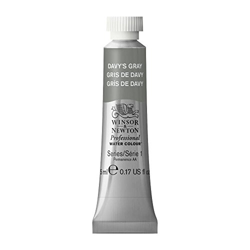 Winsor & Newton Professional Water Colour Paint, 5ml tube, Davy's Gray