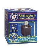 San Francisco Bay Brand Shrimpery Brine Shrimp Kit for Hatching Baby Brine Shrimp