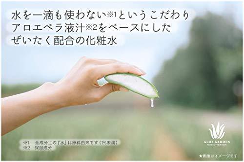アロエガーデン化粧水100mL【アロエローション】保湿成分アロエベラ液汁配合<小林製薬プロデュース>