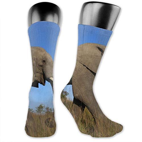 Nature Field Majestic Elephant Unisex moda de invierno mantener el calor absorbe la humedad calcetines casuales antideslizantes pueden ser deportes.
