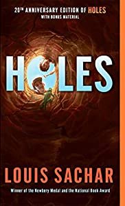 What are the thems in the novel holes?