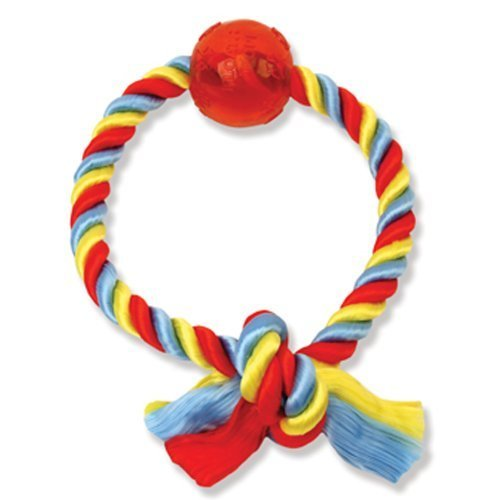 MAMMOTH Flossy Chews Poly Dri One Ring with 2–1/2-inch Ball, Medium, 8-Inch by Pet Products