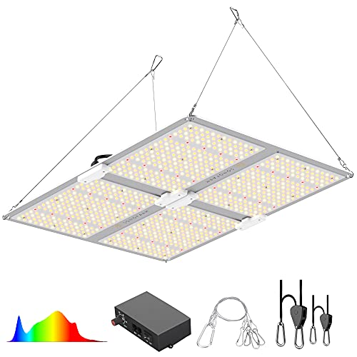 best led light for 4x4 grow tent, How to pick the Best led light for 4×4 grow tent (that Keep Harvest Crazily),