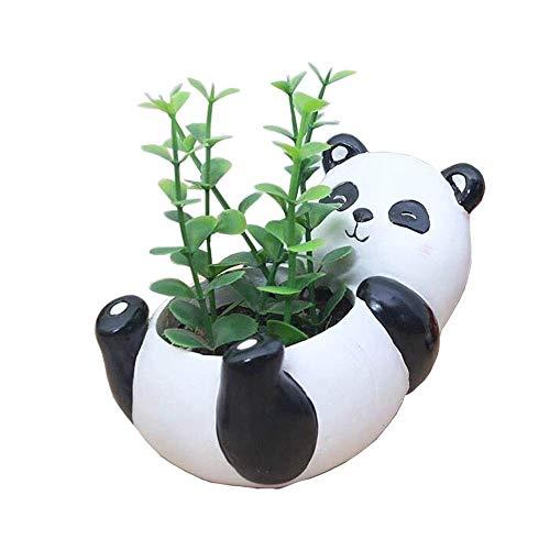 Bcaer Planta suculenta máquina sembradora creativa de flores de plantas mini dibujo animado animal lindo suculenta planta de resina olla de drenaje en maceta planta en maceta Panda suculenta Cactus Ti