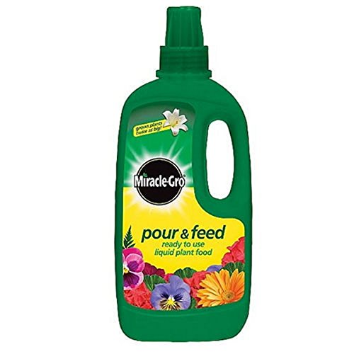 Miracle-Gro - Pour & Feed Plant Food - 1 L