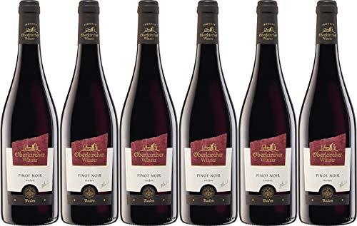 Oberkircher Winzer Collection Oberkirch Pinot Noir 2019 Trocken (6 x 0.75 l)