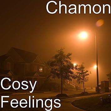 Cosy Feelings