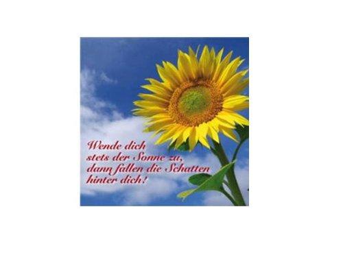 Bedruckte Leinwand: Wende dich stets der Sonne zu...: Wende dich stets der Sonne zu, dann fallen die Schatten hinter dich!