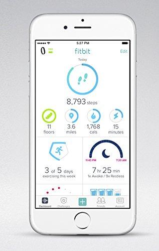FitbitFlex2フィットネストラッカーBlackL/SサイズFB403BK-JPN