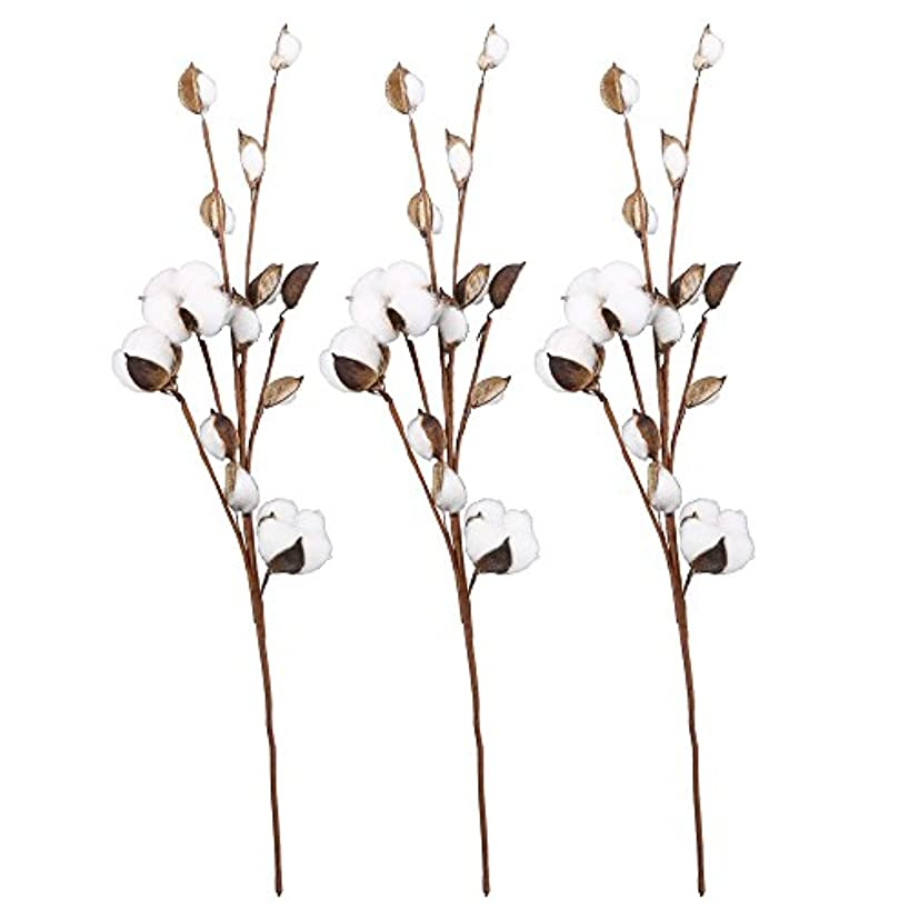 VGIA 20 Inch Cotton Stems Farmhouse Style Display Filler -Floral Decoration-Rustic Wedding Centerpiece
