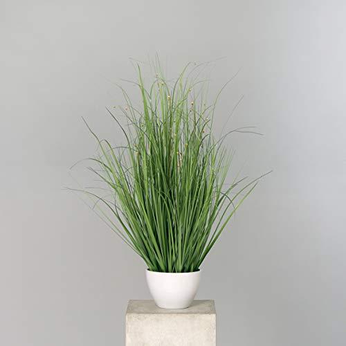 Seidenblumen Roß Grasbusch mit Blüten 80x60cm im weißen Rundtopf DP künstliches Gras Kunstpflanzen Kunstgras künstliche Pflanzen Solitärgras Ziergras