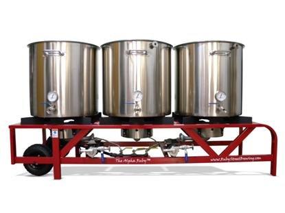 Alpha Ruby 1 Barrel Brewing System - Propane