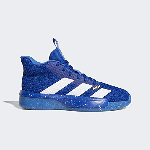 adidas Pro Next 2019 męskie buty do koszykówki, niebieski - Blau Reauni Ftwbla Azul 000 - 48 EU