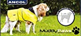 Ancol Muddy Paws Hundejacke und Brustschutz - 5