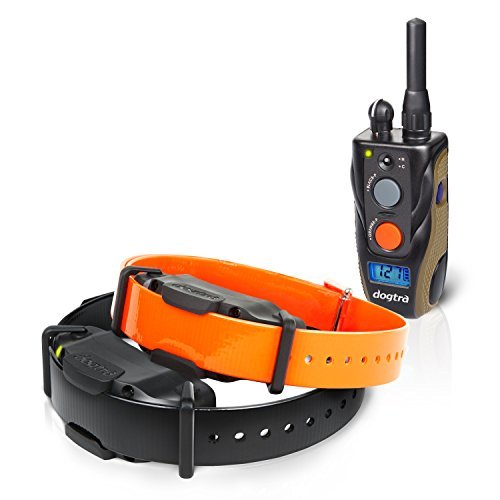 Best Dogtra E Collar Training For Dogs - Field Star 1900S - 3/4 Mile Remote Trainer with LCD Screen - Fully Waterproof Collar