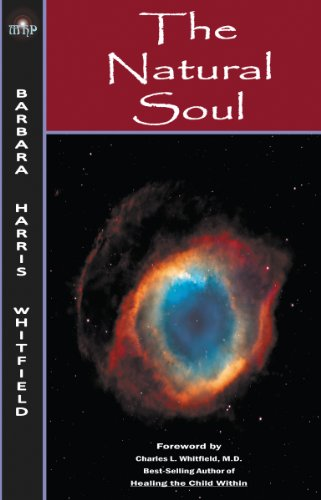 The Natural Soul: Unity with the Spiritual Energy that Connects Us: What it Looks like and how It Feels