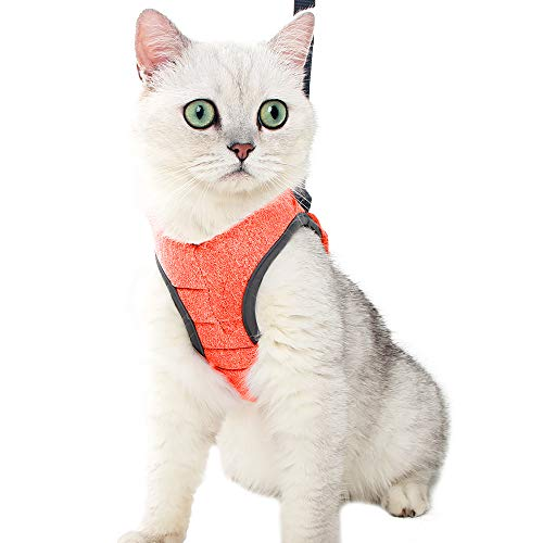 Set di pettorina e guinzaglio ultra leggero per camminare a prova di fuga set regolabile in morbida rete con ammortizzazione imbottita, giubbotto da corsa per gattini animali domestici e cuccioli...