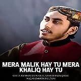Mera Malik Hay Tu Mera Khaliq Hay Tu